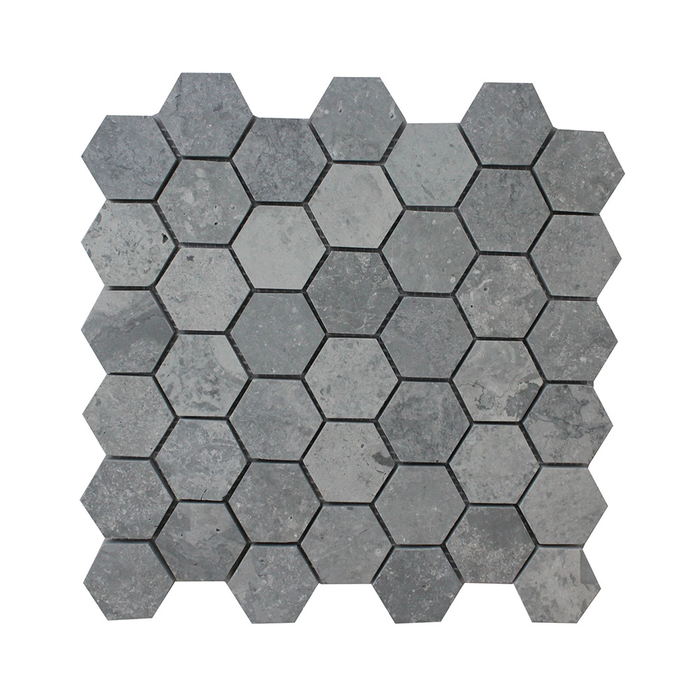 t Large Hexagon silver lion